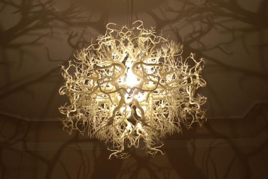 A Chandelier That Turns The Room Into A Forest Emdeco