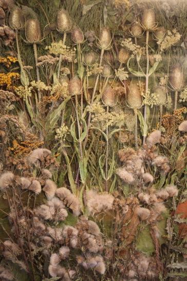 Weeds. Pio Diaz.2016